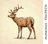 brush painting ink draw deer... | Shutterstock . vector #356159276