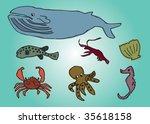 ocean creature | Shutterstock .eps vector #35618158