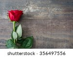 Stock photo valentine rose 356497556