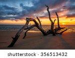 folly beach sunrise with morris ... | Shutterstock . vector #356513432