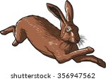 brown hare  running with four