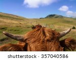 close up of mountain red cattle ... | Shutterstock . vector #357040586