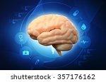 3d human brain | Shutterstock . vector #357176162