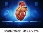 human heart   anatomy of human...   Shutterstock . vector #357177596