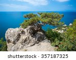 view on a alone tree on a... | Shutterstock . vector #357187325