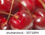 fresh cherries  shallow dof  | Shutterstock . vector #3571894