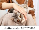 Woman Holding Lovely Grey Cat ...