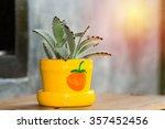 small decor tree in pot.... | Shutterstock . vector #357452456