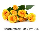beautiful yellow roses on the...   Shutterstock . vector #357494216
