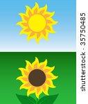 sunflower and sun | Shutterstock .eps vector #35750485