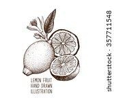 Ink Hand Drawn Lemon Isolated...