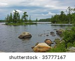 Northern Lake in Voyagers national park with rock and flowers in foreground