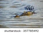 closeup of an approaching... | Shutterstock . vector #357785492