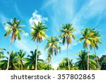 coconut palm trees perspective... | Shutterstock . vector #357802865