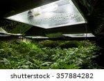 marijuana grow room with a high ... | Shutterstock . vector #357884282