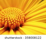 Macro Shot Yellow Flower...