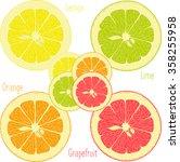 lemon  lime  orange  pink... | Shutterstock .eps vector #358255958
