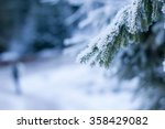 snow covered tree pine branch... | Shutterstock . vector #358429082