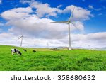 Wind Turbines and Cows on Green Meadow. - stock photo