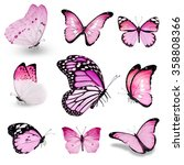 Nine Pink Butterflies On White...