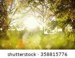 Blurred Image Of Sunlight...