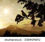 Singing Bird On A Branch...