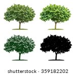 tree in four different... | Shutterstock . vector #359182202