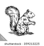 black and white engrave... | Shutterstock .eps vector #359213225