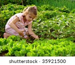 young girl cropping green... | Shutterstock . vector #35921500