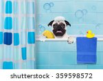 Pug Dog In A Bathtub Not So...