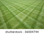 Manicured Lawn Professionally...