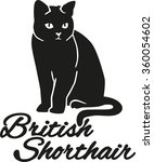 british shorthair cat with... | Shutterstock .eps vector #360054602