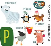 Cute Zoo Alphabet In Vector. P...