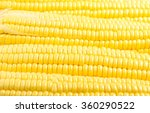 fresh yellow corn   Shutterstock . vector #360290522