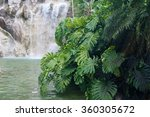 artifical waterfall in the... | Shutterstock . vector #360305672