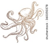 octopus sketch hand drawn... | Shutterstock .eps vector #360350378