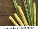 fresh sugarcane cut into pieces ... | Shutterstock . vector #360360536