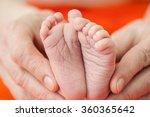 newborn baby feet | Shutterstock . vector #360365642