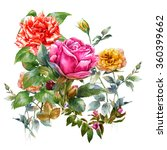 Watercolor Painting Of Rose On...