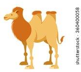 cartoon yellow camel   Shutterstock .eps vector #360400058