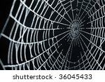 a close up of a spider web with ... | Shutterstock . vector #36045433