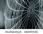 A Close Up Of A Spider Web Wit...