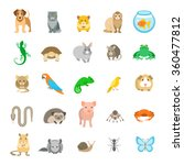Animals Pets Vector Flat...
