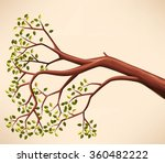 tree branch with green leaves   Shutterstock .eps vector #360482222