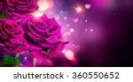 Stock photo roses and hearts background valentine or wedding card design beautiful violet roses bouquet over 360550652