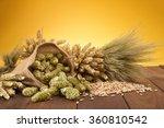 beer ingredients     hops ...   Shutterstock . vector #360810542