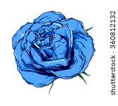 blue rose. vector illustration | Shutterstock .eps vector #360812132