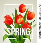 spring text with  tulip flower. ...