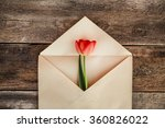 spring flower. march 8th ... | Shutterstock . vector #360826022
