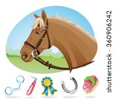 brown horse with english bridle ... | Shutterstock .eps vector #360906242